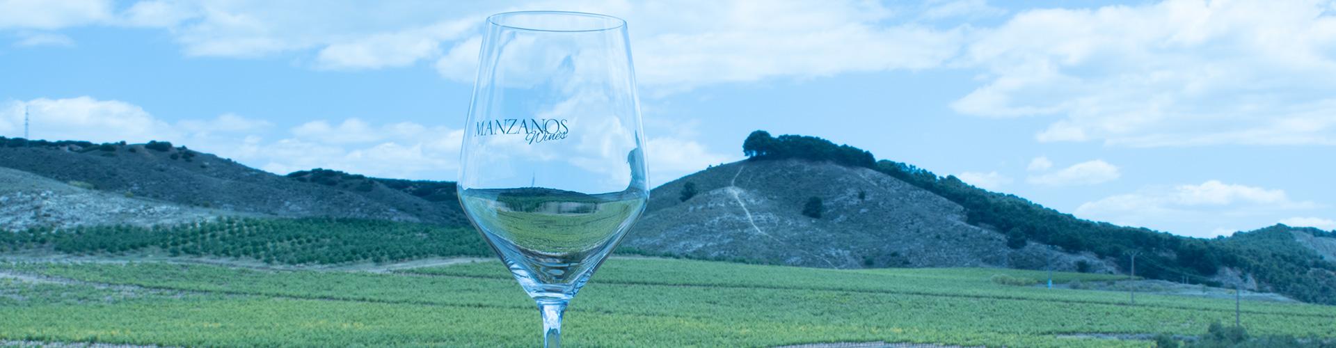 practicas-sostenibles-manzanos-wines-2